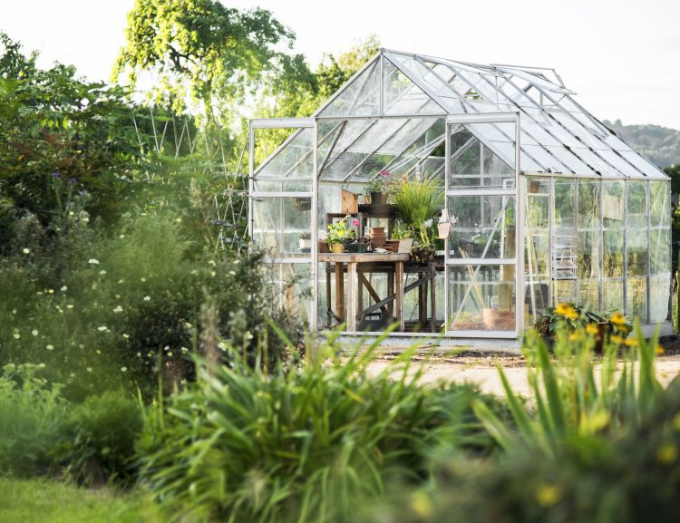 Have a greenhouse in your garden with Sedpa